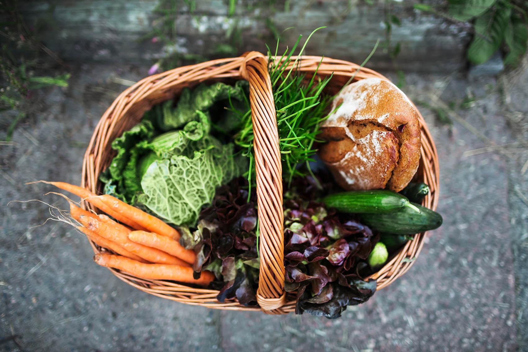 Ernährung in der Stillzeit – Das dürfen Mütter essen