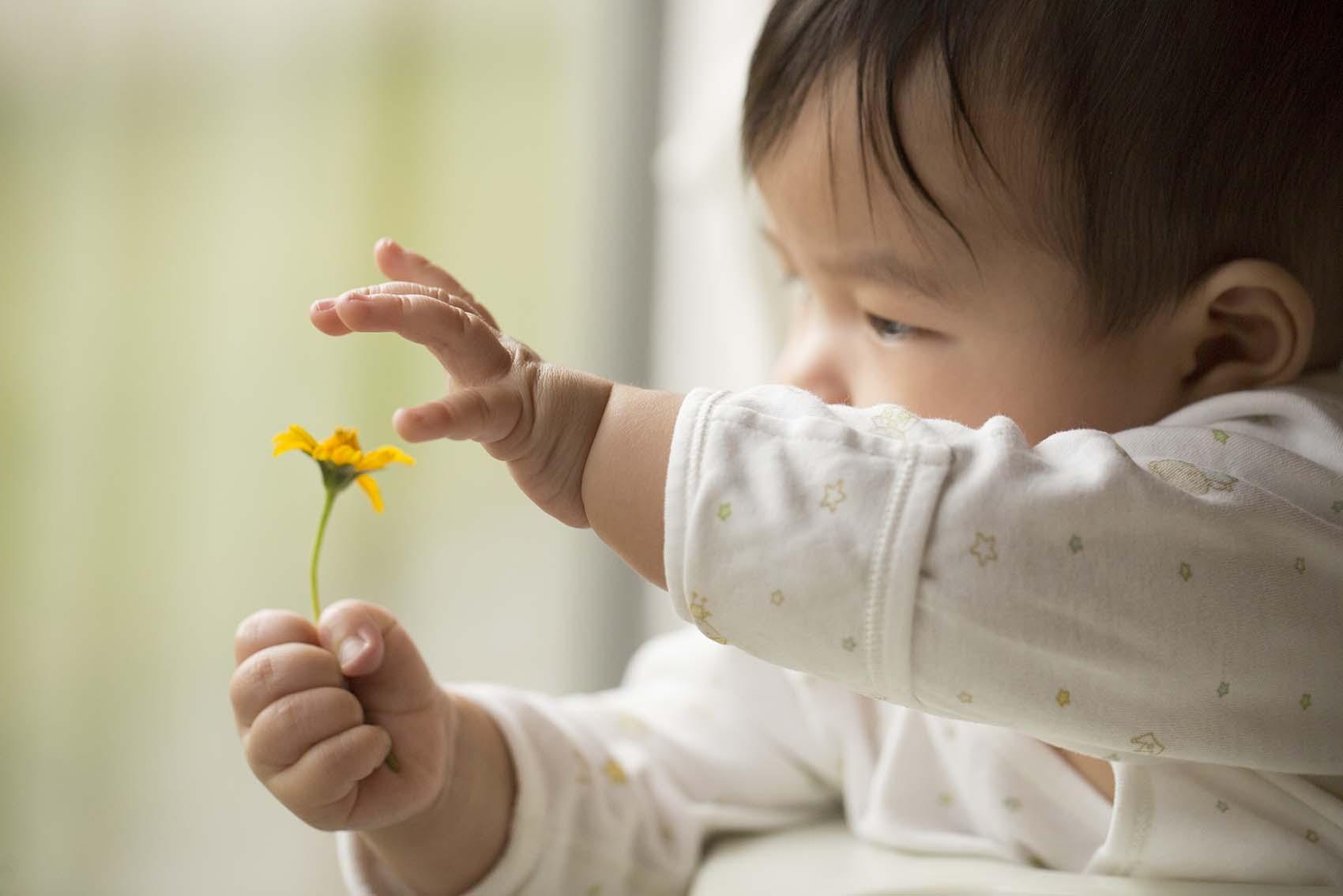 Baby Entwicklung im ersten Jahr – Sitzen, krabbeln, laufen